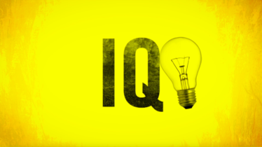 IQ Test</br>Amnesty International