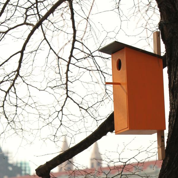Singing Bird Houses